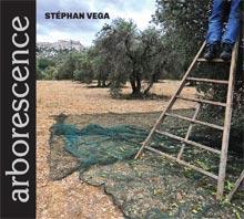 couv-arborescence-bd